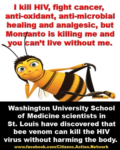 Monsanto is killing bees and killing us